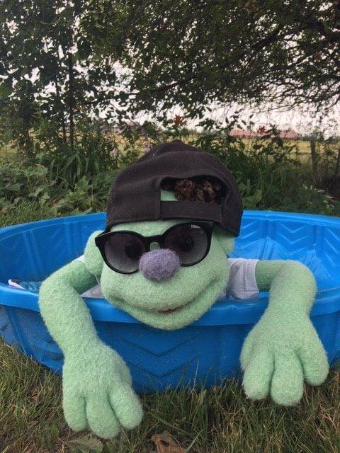 Kiwi, la mascotte de Premiers mots, est dans la piscine